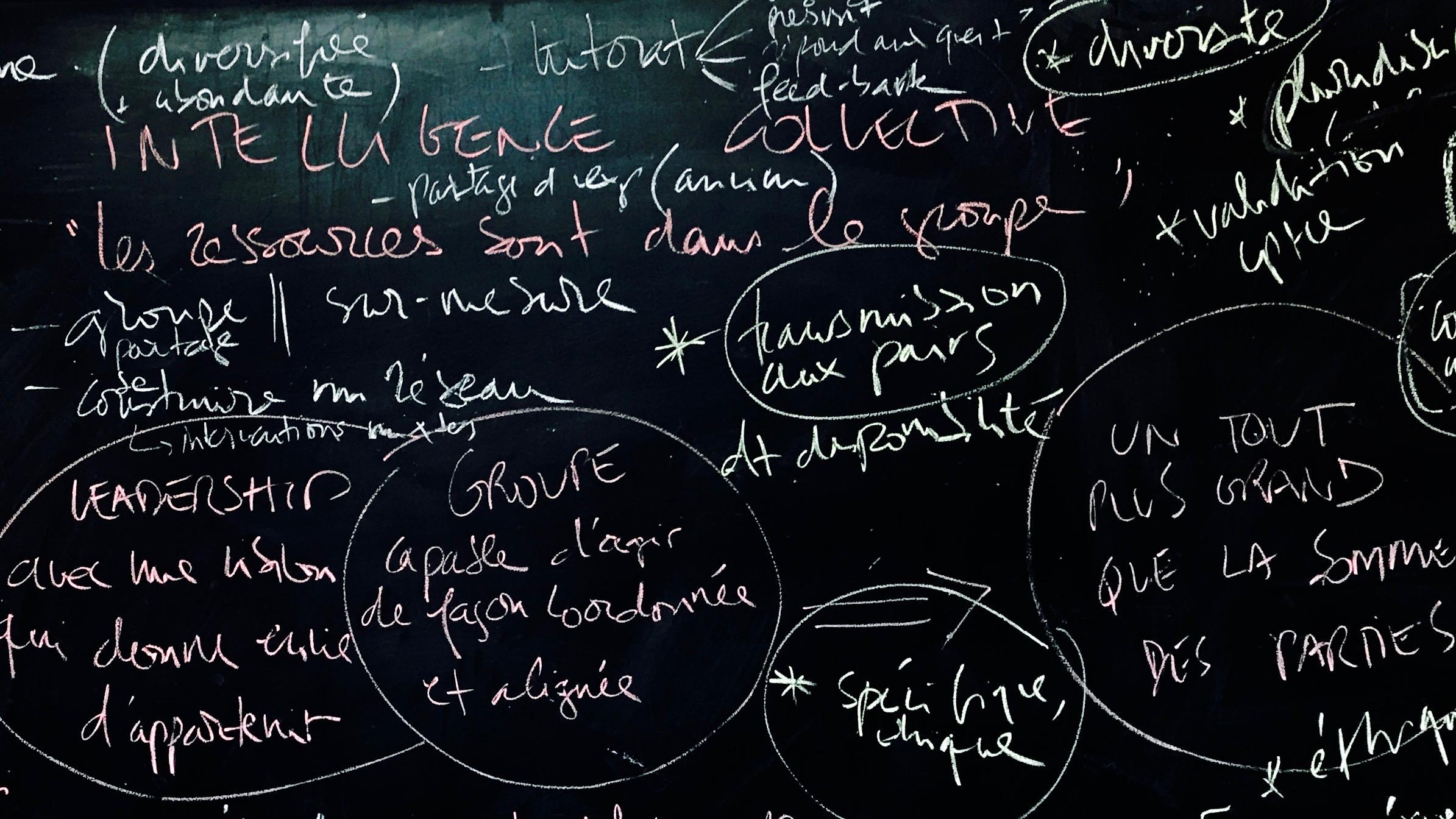 Les conditions d'émergence de l'intelligence collective