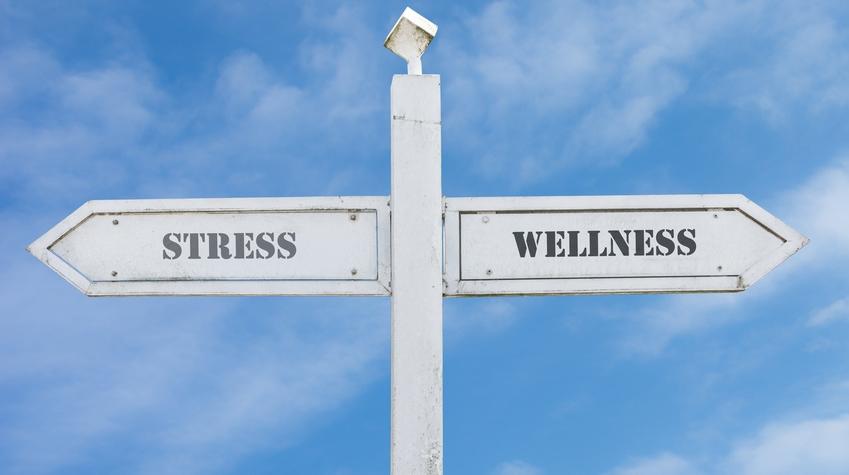 Qualité de vie au travail - Stress ou bien-être ?